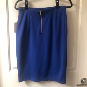 Blue pencil skirt with gold back zipper